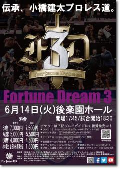 fortune_dream3_poster